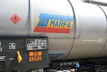 CFR Marfă a fost respins de la privatizare