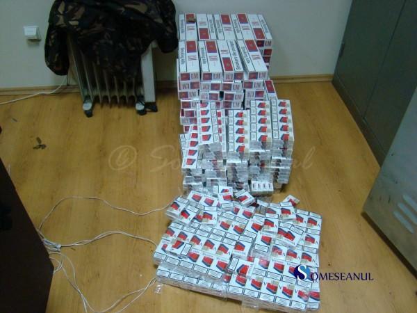tigari confiscat contrabanda frontiera