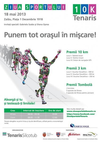 Poster Ziua Sportului_Zalau 2013