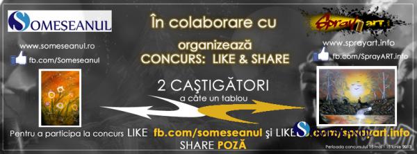 cover-fb-colaborare