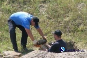 ULTIMA ORĂ: Proiectil aerian găsit în Beclean
