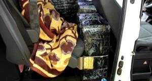 tigari-confiscate-1