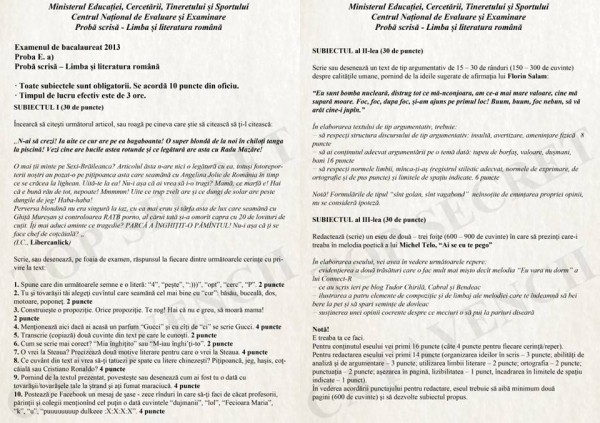 subiecte BAC 2013