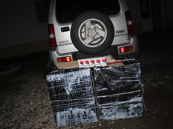 tigari confiscate sighet