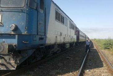 CLUJ. Un tren a deraiat, mai multe animale au fost omorâte