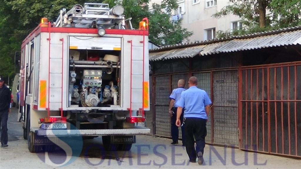 someseanul-pompieri - DSC01795