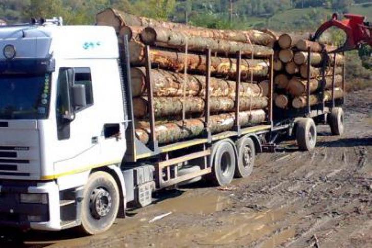 VIDEO ȘOCANT – Doi bărbaţi au murit după ce au fost loviţi de lemnele căzute dintr-o remorcă