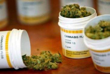 Canabis medicinal disponibil curând în farmaciile românești