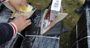 tigari contrabanda ucraina maramures