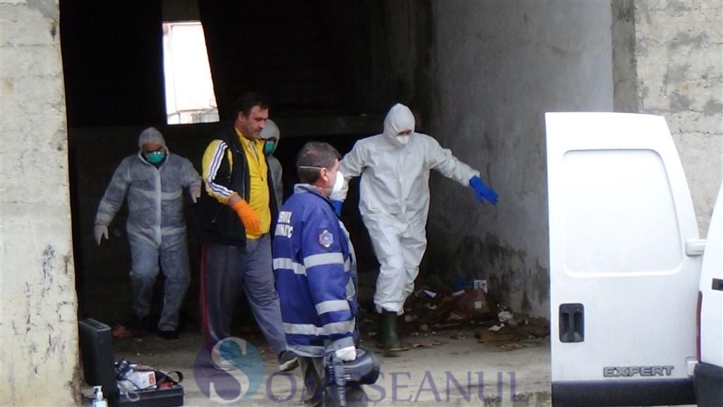 Cadavru descoperit mort Dej (21)