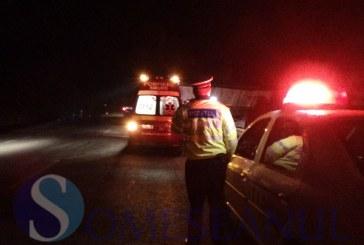 Un șofer beat s-a răsturnat cu autoutilitara în afara carosabilului