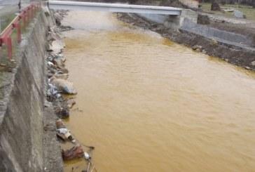 Hoții de fier vechi au provocat poluarea Someșului Mare