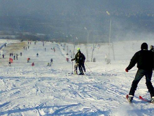 partia schi Feleacu