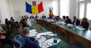 consiliul local dej 2014