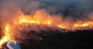 incendiu-vegetatie-gherla