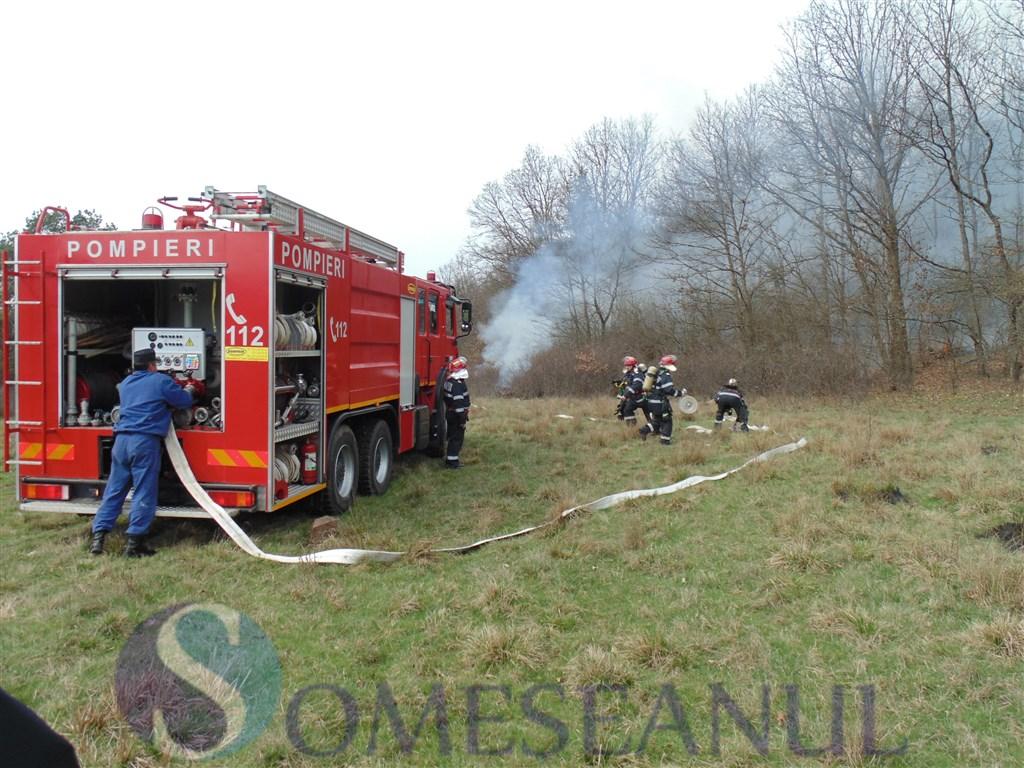 pompieri-incendiu-vegetatie-fond-forestier