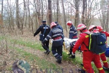 Moarte cumplită pentru un tânăr de 18 ani în pădure la Băișoara