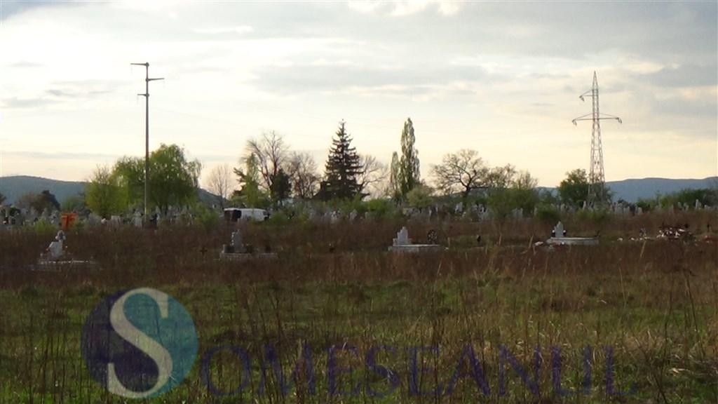 Mormintele din cimitirul Dealul Florilor Dej vandalizate de o turma de oi (1)