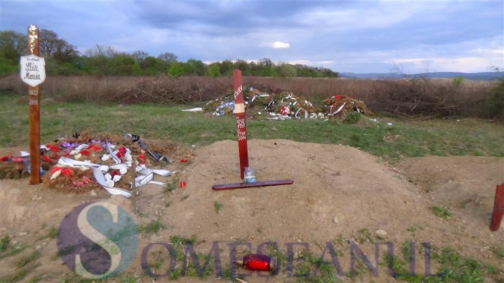 Mormintele din cimitirul Dealul Florilor Dej vandalizate de o turma de oi (2)