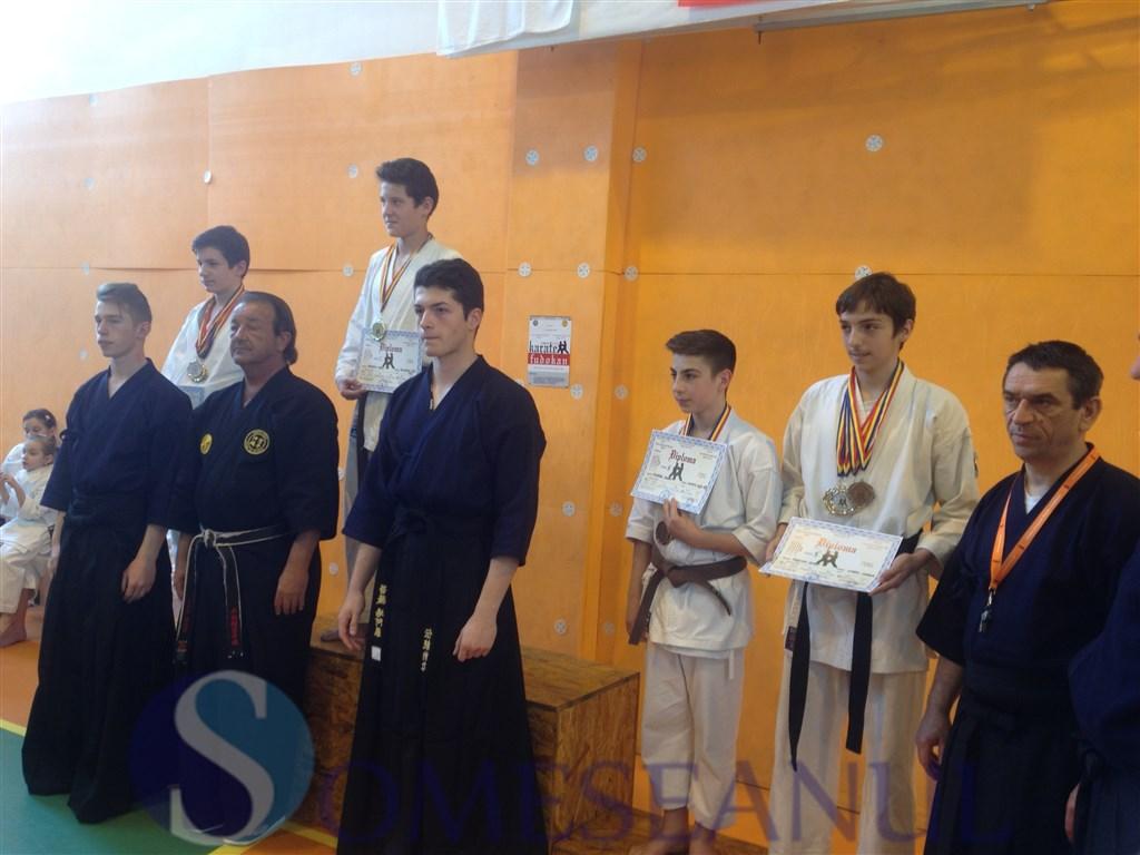 someseanul-Dorin Panescu-Budokan Ryu Dej