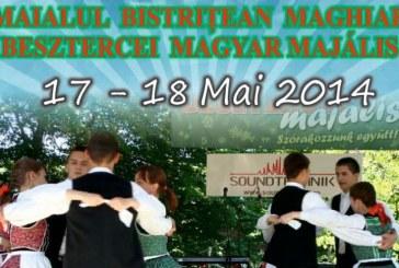 """Maialul Bistriţean Maghiar, în weekend  pe pietonalul """"Liviu Rebreanu"""""""