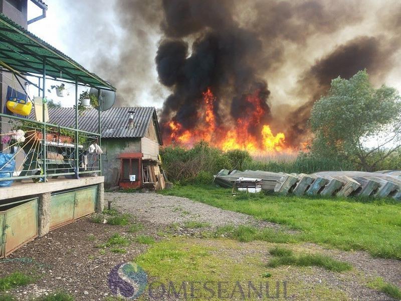 incendiu Sacalaia (1)
