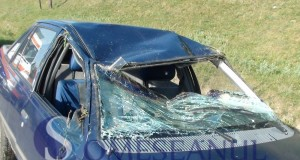 accident Caseiu – Rugasesti (2)