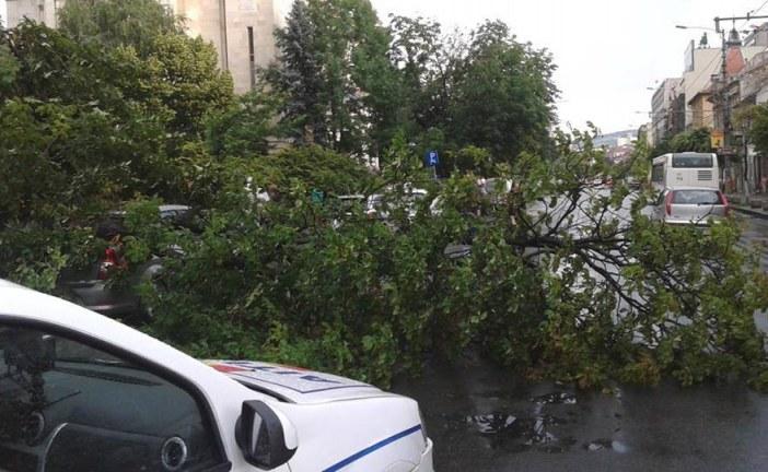 Furtună puternică la Cluj-Napoca: Copaci doborâți, cabluri rupte și un acoperiș decopertat