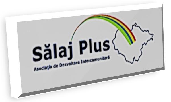 logo_salaj_plus