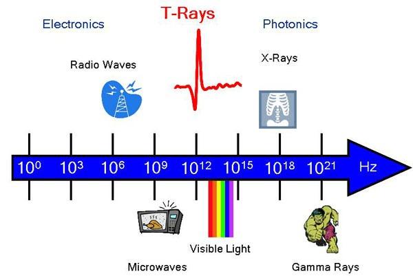 t-rays