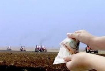 Fermierii vor putea obtine adeverintele necesare pentru accesarea de credite de la banci din luna august sau septembrie