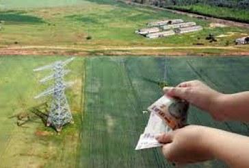De azi, fermierii pot obtine adeverinte de la Agentia de Plati si Interventie pentru Agricultura pentru accesarea de credite