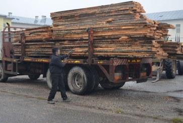 Transporta material lemnos fără a deţine aviz de însoţire sau documente de provenienţă