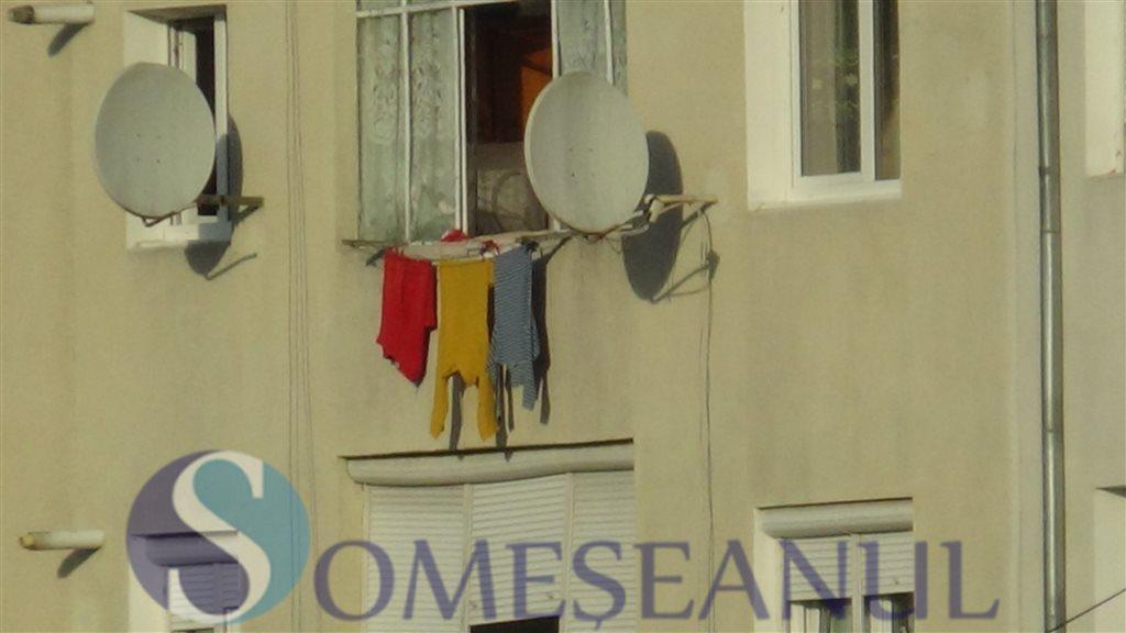 steagul romaniei rufe dej-someseanul (1)