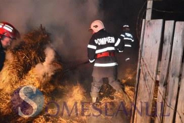 Adăpost de animale cuprins de flăcări. Incendiul s-a extins și la o casă