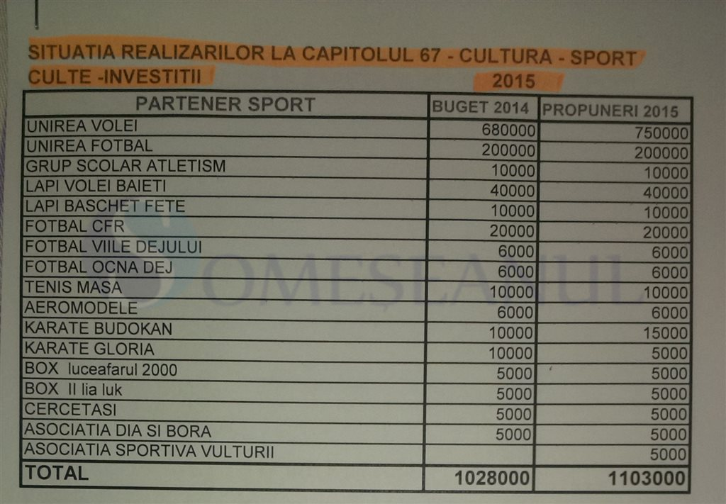 someseanul-alocari bani cluburi sportive dej 2015