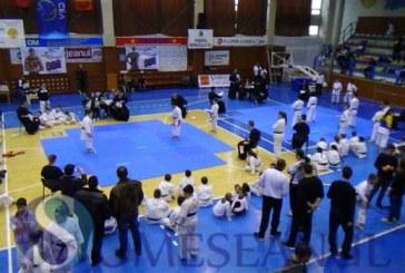 Dejul a fost gazda finalei Campionatului Național de Karate Kogaion pentru copii – FOTO/VIDEO