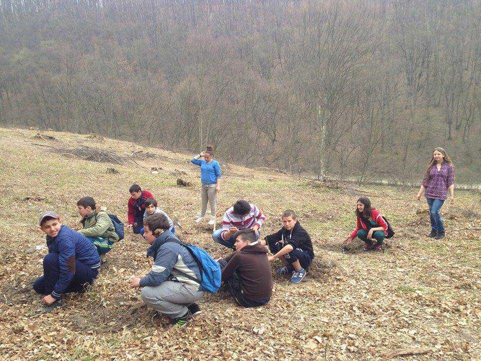 plantare copaci scoala speciala dej (25)