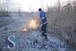 Incendii de vegetație în serie în zona Sălaj