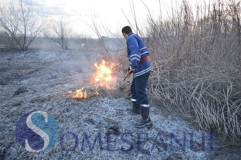 incendiu vegetatie livada-1
