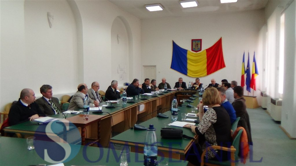 sedinta consiliul local dej aprilie 2015