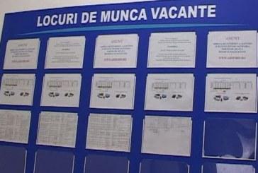 Locuri de muncă la Dej (P)