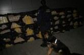 Infractor periculos prins de câinele Meban