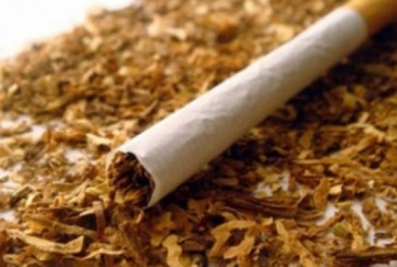 Peste 500 pachete cu ţigări de contrabandă confiscate de poliţiştii Biroului Transporturi Feroviare