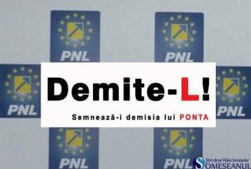 """Campania """"Semnează-i demisia lui Ponta"""" se desfășoară și la Dej"""