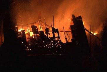 Peste 100 de animale au ars de vii într-un incendiu la Rona