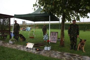 Imagini emoționante. Max, câinele erou al Armatei Române, înmormântat cu onoruri militare – VIDEO