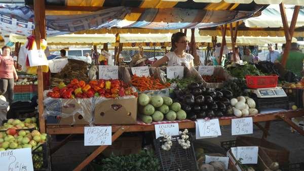 taraba produse agricole