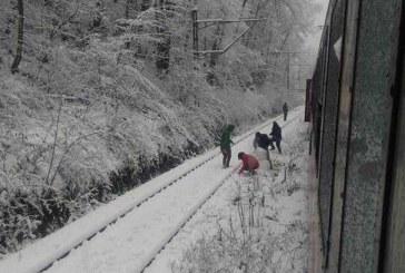 CFR Călători: 80 de trenuri au fost anulate miercuri