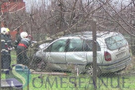 Accident la Dej. A zburat cu mașina într-un nuc, apoi a plecat de la locul accidentului – FOTO/VIDEO